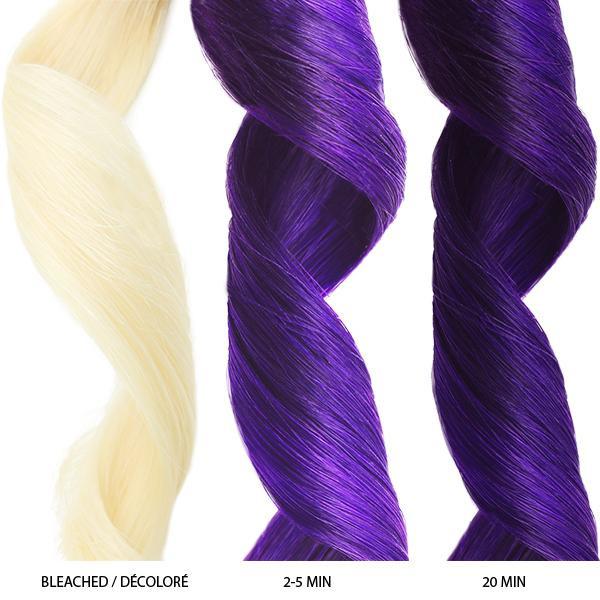 Celeb Luxury - Purple Colorditioner 8.25oz