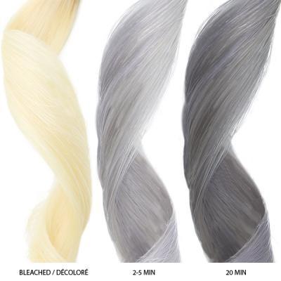 Celeb Luxury - Silver Colorditioner 8.25oz